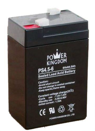 ΜΠΑΤΑΡΙΑ ΜΟΛΥΒΔΟΥ POWER KINGDOM PS4.5-6